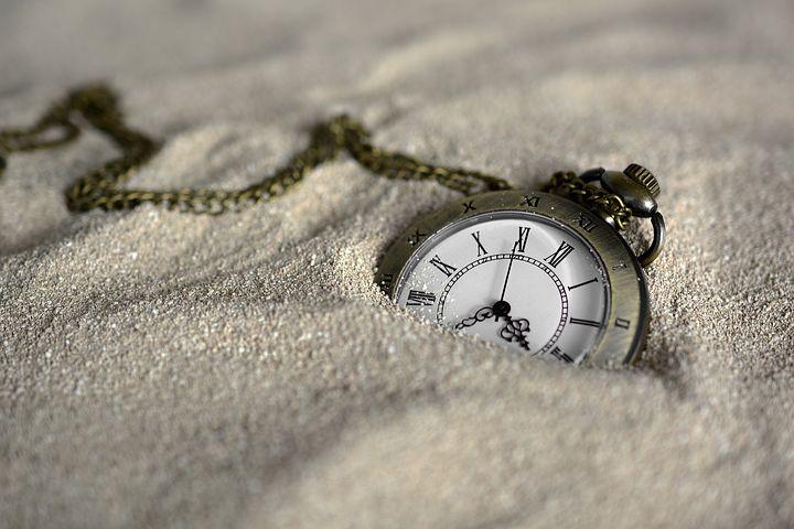 Od żółwia do lamparta – czyli czas rozpoznania wniosku o ogłoszenie upadłości konsumenckiej